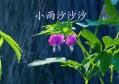 关于雨的诗句,微赚读完,直呼:美哉!